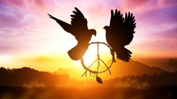 Wereld Denkdag: Thema Peacebuilding